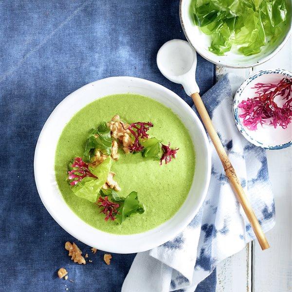 Sopa verde con lechuga de mar