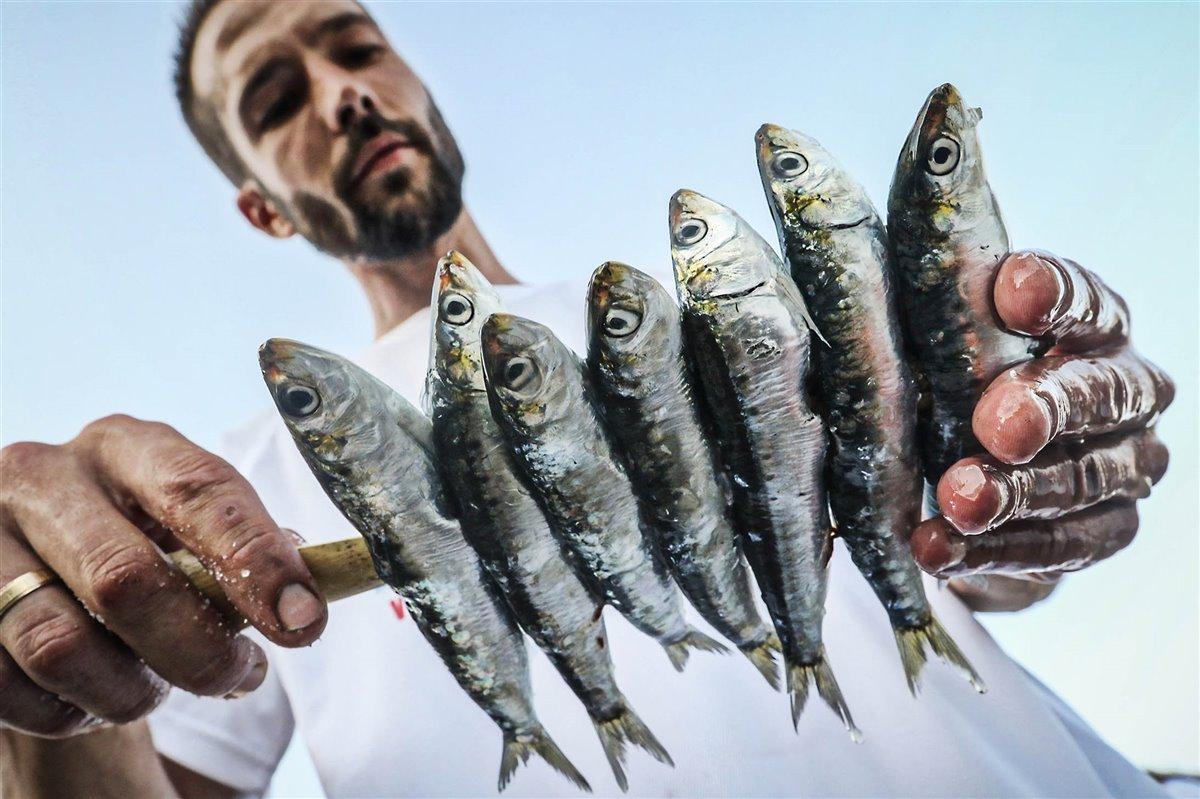 Espeto de sardinas - Lorenzo Carnero